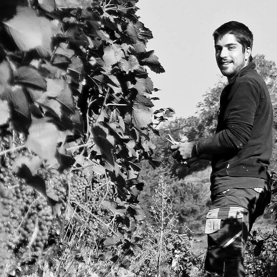 Romain Cipolla, œnologue et viticulteur